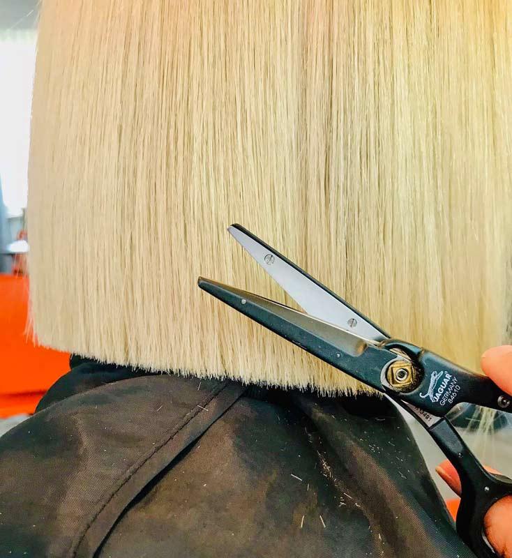 Стрижка горячими ножницами для секущихся волос. Инна Алексеева